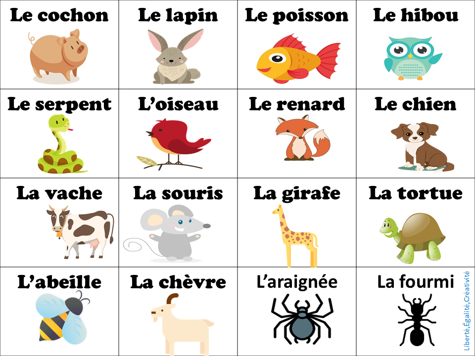vocabulario les animaux