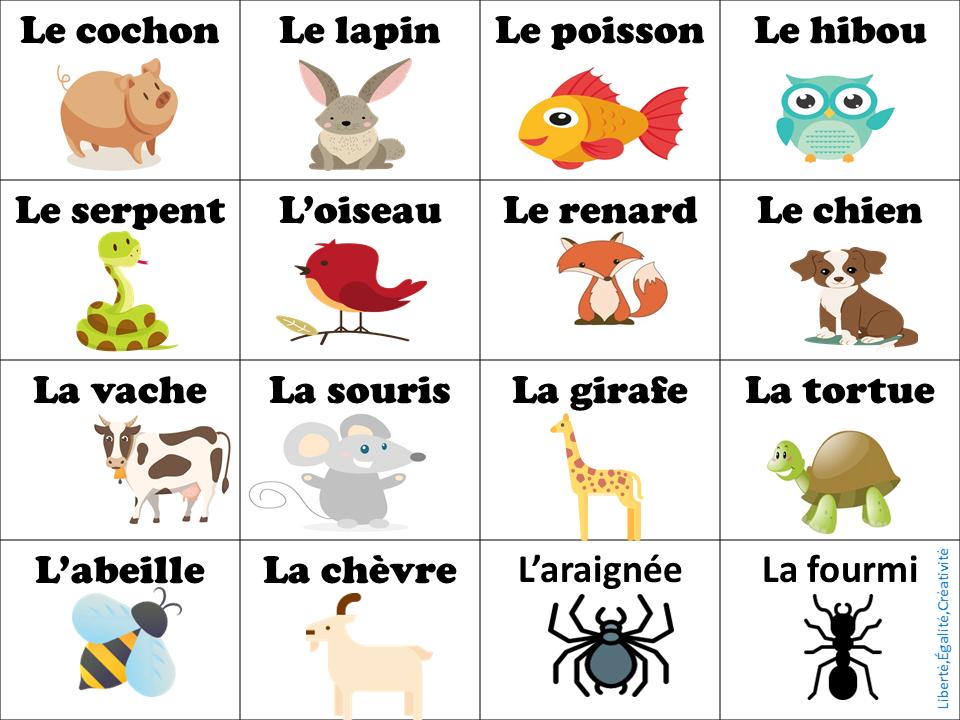 vocabulario les animaux
