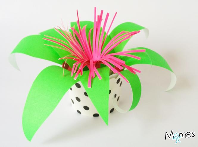 plante-papier-6